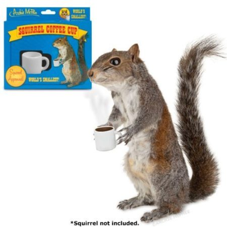 novelty gag gift squirrel miniature coffee cup