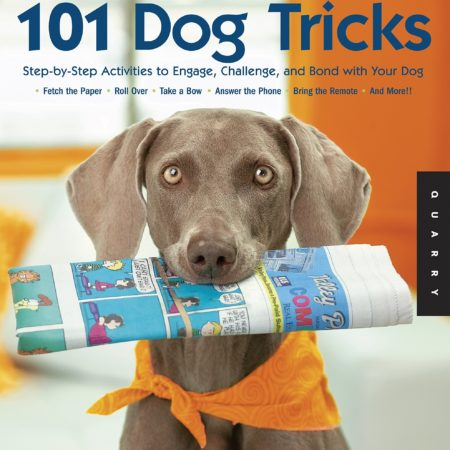 book with step by step guide on how to teach your dog 101 dog tricks