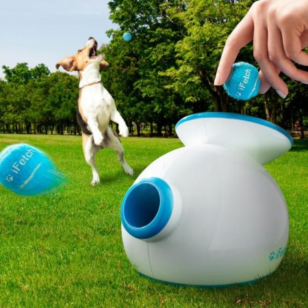 machine that automatically plays fetch with your dog by tossing the tennis ball after he places it back in the machine